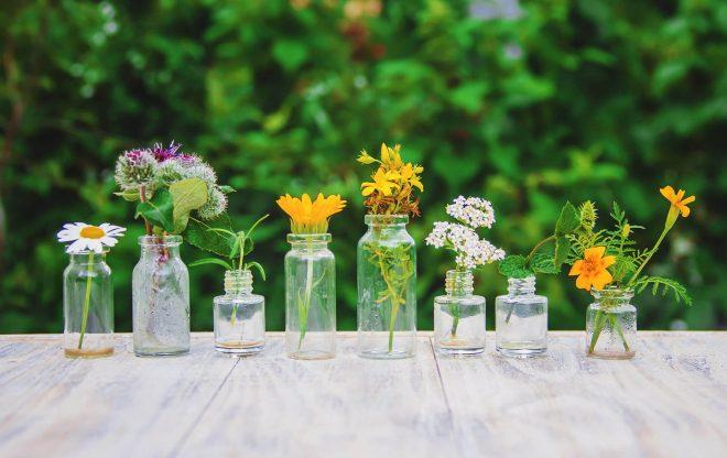 formation professionnelle au massage aromatique - formation à la phytothérapie